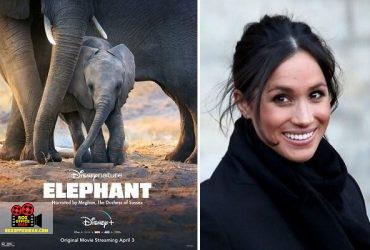 فیلها